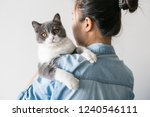 Stock photo holding the cute kitten filming indoors 1240546111