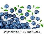 fresh ripe blueberry isolated... | Shutterstock . vector #1240546261