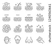 skin layer vector line icons.... | Shutterstock .eps vector #1240563661