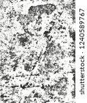distressed overlay texture of... | Shutterstock .eps vector #1240589767