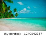 tropical sand beach with palm... | Shutterstock . vector #1240642357