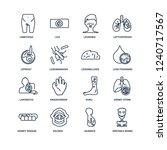 irritable bowel syndrome ... | Shutterstock .eps vector #1240717567