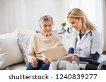 a health visitor and a senior... | Shutterstock . vector #1240839277