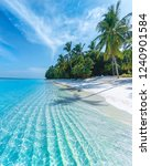 tropical summer beach | Shutterstock . vector #1240901584