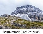 close views of the yangmaiyong... | Shutterstock . vector #1240915804