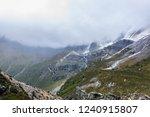 close views of the yangmaiyong... | Shutterstock . vector #1240915807
