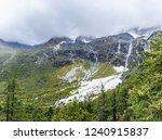 close views of the yangmaiyong... | Shutterstock . vector #1240915837