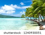 travel  seascape and nature... | Shutterstock . vector #1240930051