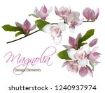 magnolia branch and bouquet... | Shutterstock .eps vector #1240937974