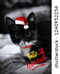 Stock photo cute little black with white christmas kitten a funny kitten with santa hat greeting card with a 1240952254
