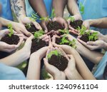 group of volunteer with sprout... | Shutterstock . vector #1240961104