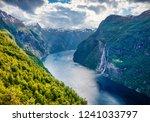dramatic summer scene of... | Shutterstock . vector #1241033797
