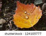 Water Droplets Collected In...