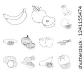 vector design of vegetable and... | Shutterstock .eps vector #1241155474