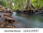 mangrove forests with river | Shutterstock . vector #124115557