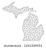 polygonal mesh map of michigan... | Shutterstock .eps vector #1241339551