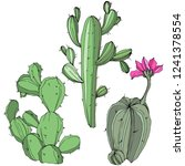 vector cactus. wild spring leaf ...   Shutterstock .eps vector #1241378554
