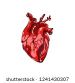 illustration heart on white... | Shutterstock .eps vector #1241430307