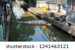 bangkok  thailand   november 25 ... | Shutterstock . vector #1241463121