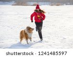 the collie dog running with... | Shutterstock . vector #1241485597