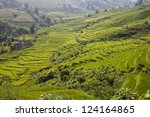 paddy fields in mountains of... | Shutterstock . vector #124164865