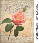 vintage rose postcard | Shutterstock .eps vector #1241659057