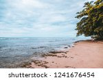 puerto viejo beach in the costa ... | Shutterstock . vector #1241676454