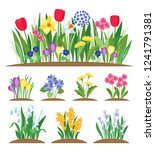 Stock vector spring garden flowers grass and plant early spring flowering vector set 1241791381