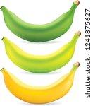 vector graphics  banana ...   Shutterstock .eps vector #1241875627