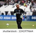 rio de janeiro   brazil... | Shutterstock . vector #1241979664