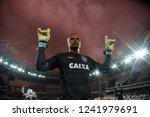 rio de janeiro   brazil... | Shutterstock . vector #1241979691