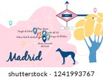vector illustration of madrid... | Shutterstock .eps vector #1241993767