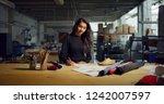 portrait of professional... | Shutterstock . vector #1242007597
