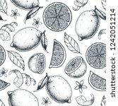 citrus seamless pattern. hand... | Shutterstock .eps vector #1242051214