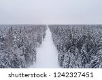 top down view of the forest in...   Shutterstock . vector #1242327451