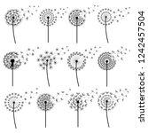 set of black dandelions blowing ... | Shutterstock . vector #1242457504