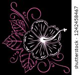 aloha. pink hibiscus flower... | Shutterstock . vector #1242458467