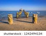 frozen wooden breakwaters line... | Shutterstock . vector #1242494134