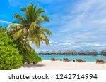 wooden sunbed and umbrella on...   Shutterstock . vector #1242714994