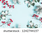 christmas or winter composition.... | Shutterstock . vector #1242744157