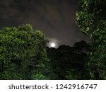 the beauty of night time  looks ... | Shutterstock . vector #1242916747