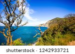 mountain sea trees view.... | Shutterstock . vector #1242933721