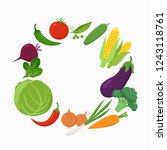 fresh vegetables around the...   Shutterstock .eps vector #1243118761
