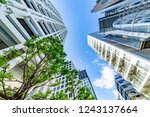 fresh green and buildings in... | Shutterstock . vector #1243137664