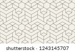 pattern with thin straight... | Shutterstock .eps vector #1243145707