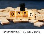 opec organization of the... | Shutterstock . vector #1243191541