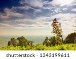 row of trees in the hills with... | Shutterstock . vector #1243199611