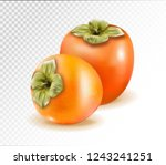 pair of ripe persimmon fruits... | Shutterstock .eps vector #1243241251