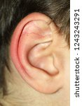 close up of a boy ear | Shutterstock . vector #1243243291