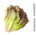 Red Lettuce Isolated On White